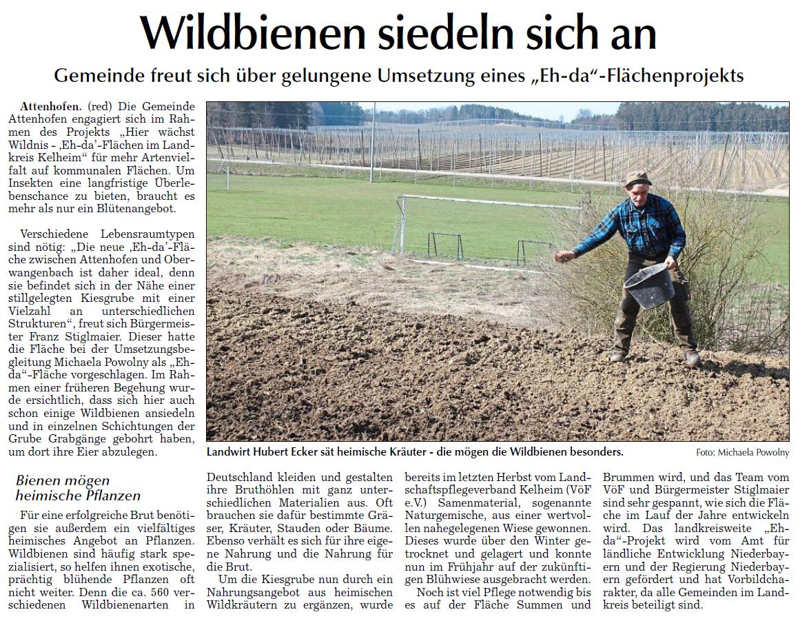 Wildbienen siedeln sich in Attenhofen an